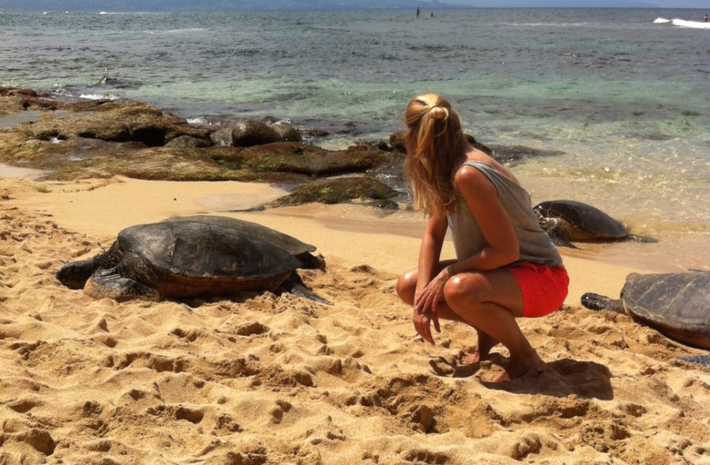 Surrounded by sea turtles